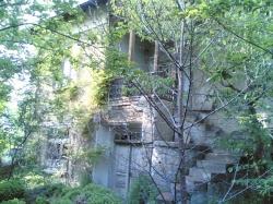 продава-къща-с-дойренци-9931