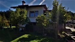 продава-къща-с-сливек-13611