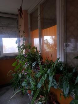 продава-тристаен-апартамент-гр-плевен-9-ти-квартал-13778
