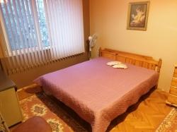 дава-под-наем-двустаен-апартамент-гр-плевен-широк-център-13939